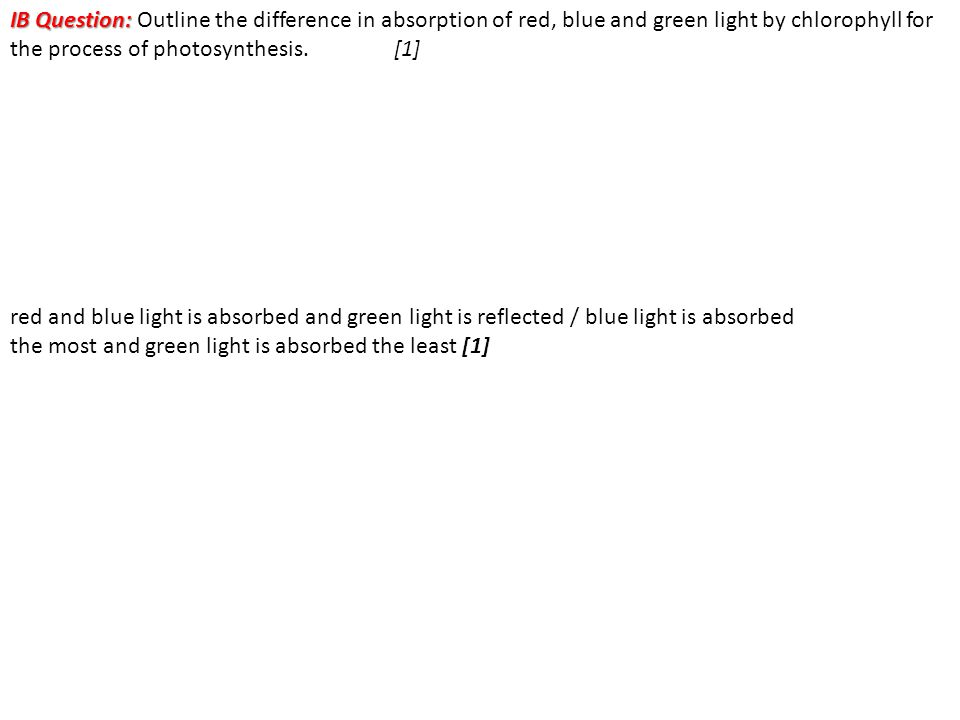 IB Question: Outline the difference in absorption of red, blue and green light by chlorophyll for the process of photosynthesis. [1]